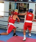 Boksta Avrupa şampiyonları Antalya'da belirlenecek