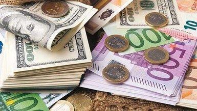 14 Ocak güncel döviz fiyatları! Dolar, euro, pound kaç lira? (TL) Döviz fiyatları...