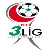 TFF 3. Lig 2. Grup'ta görünüm