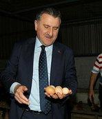 Bakan Bak yumurta topladı