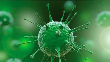 Güreş camiasında corona virüsü şoku! Testi pozitif çıktı