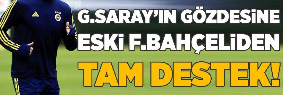 Galatasaray'ın gözdesine eski F.Bahçeliden destek
