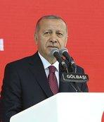 Erdoğan Avrupa şampiyonu Akgül'ü kutladı
