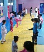 Bitlis'teki yaz spor okulları 25 branşta devam ediyor