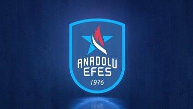 Anadolu Efes'e bronz ödül