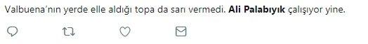 Fenerbahçe taraftarı Ali Palabıyık'a tepkili!