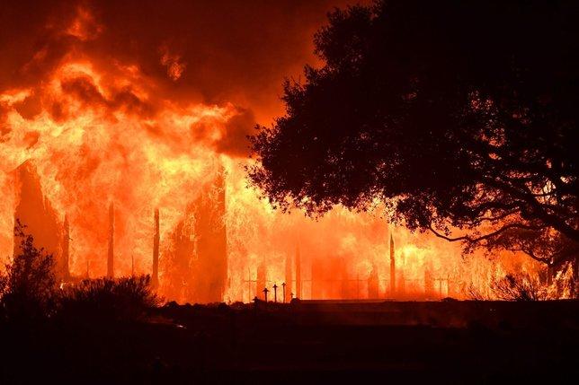 Büyük yangın, NBA'e de sıçradı!