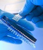Denizlispor'un corona virüsü testi sonuçları açıklandı