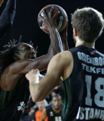 Darüşşafaka Tekfen'in konuğu Maccabi FOX