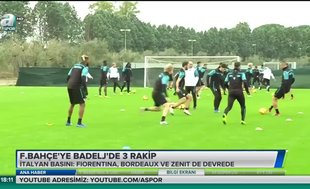 Fenerbahçe'ye Badelj'de 3 rakip
