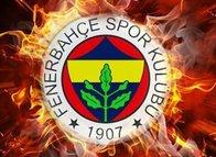 Bundesliga'yı kasıp kavuran yıldız Fenerbahçe'ye! Özel madde devreye sokulacak