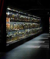 Müzeye seçim engeli