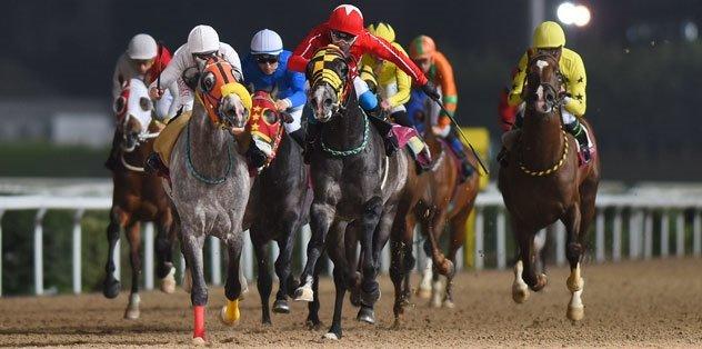 At yarışından 4 liralık kuponla 422 bin lira kazandılar!
