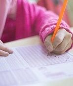 YDS sınav giriş belgesi nasıl sorgulanır? 2019 YDS ne zaman?