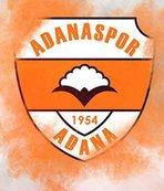 Adanaspor'da yeni yönetim görev bölümü yaptı