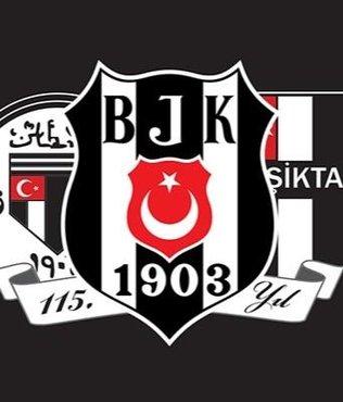 Ivan Buva Beşiktaş Sompo Japan'da