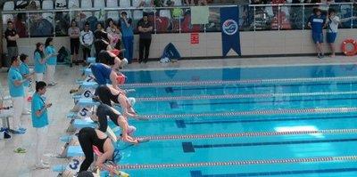 Paletli Yüzme Şampiyonası Gebze'de yapılacak