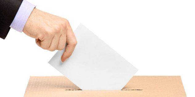 Beyaz oy girişimi