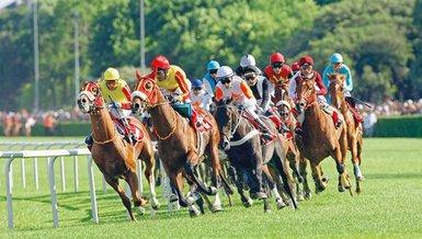 At yarışı ikramiyelerinde planan iyileştirme tarihi belli oldu