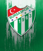 Bursaspor 16.9 milyon TL gelir elde etti