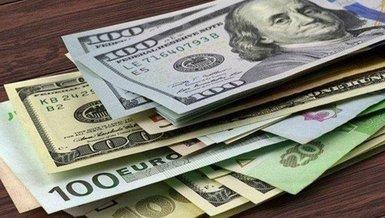30 Ağustos güncel döviz fiyatları! Dolar, euro, pound kaç lira? (TL) Döviz fiyatları...
