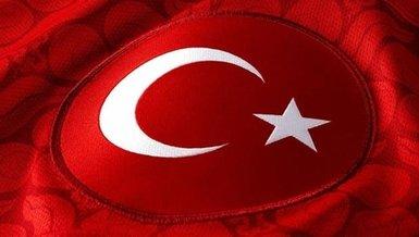 Türkiye, FIFA dünya sıralamasında 3 basamak geriledi!