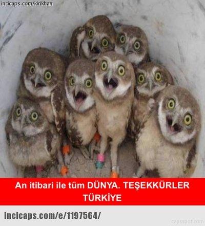 Türkiye - İzlanda capsleri
