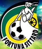 Hollanda'da Türklerin yönettiği Fortuna Sittard birinci lige yükseldi