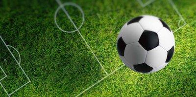 Meksika Ligi corona virüsü salgını nedeniyle iptal edildi